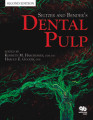 Seltzer_Benders_Dental_Pulp