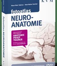 fotoatlas Neuro-anatomie